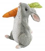 RabbitHoldingCarrotLittle