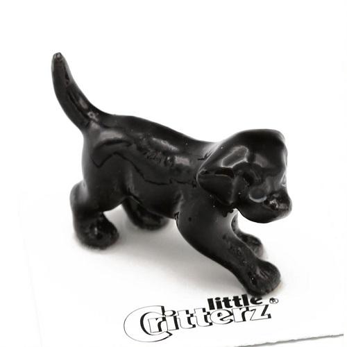 Little Critterz (LC802)