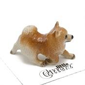 PomeranianLittle